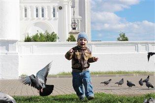 Любите, дети, голубей!