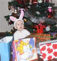Новогодний Зайка