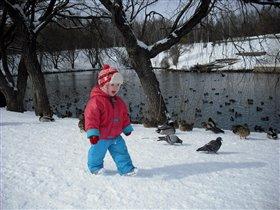 Гоняем голубей и уток