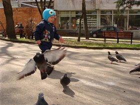 Я маленький или птички большие?!