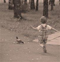 Не гоняй голубей
