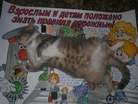 Кот формата А1