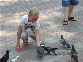 кормим голубей в одессе