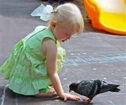 Алиса и голубь