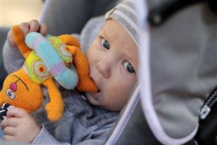 Лев Александрович c самой вкусной любимой игрушкой