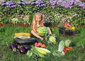 Овощи и фрукты-пальчики оближешь.Наш урожай 2012