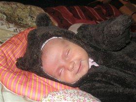 Сладкая улыбка медвежонка