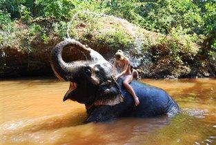 самое потрясающее животное,что я встречала!!!