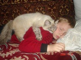 Кот и я - неразлучные друзья