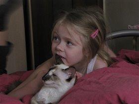 Кошки и дети сегда вместе - и у телевизора тоже
