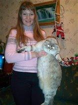 Вот такой огромный кот!