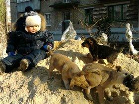 четвероногие друзья))))