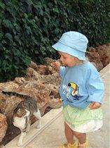 Даша знакомится с кошкой