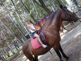 Я люблю лошадку!