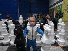 Играю в шахматы