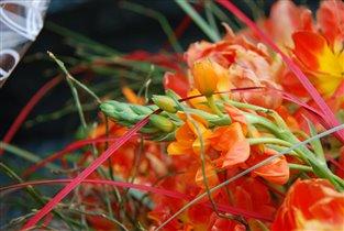 цветы радости