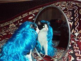 Свет мой, зеркальце, скажи...