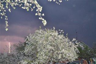 Люблю грозу в начале мая