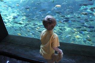 Вырасту, буду изучать океан.
