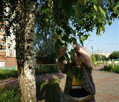 исследуем листики берёзки)))))))