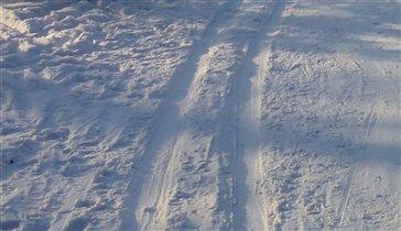 лыжня - тоже след