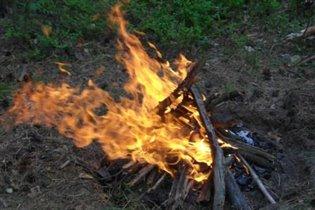 Завораживающие языки пламени