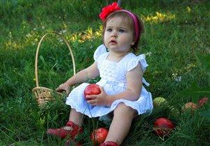 Яблоки созрели! Фруктов – урожай! Собирай быстрее,