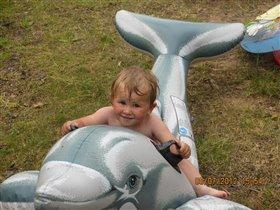 На дельфине...