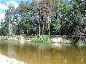 Наша речка самая чистая и красивая