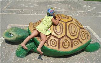 'Я на солнышке лежу'...с любимой Черепахой)))