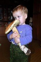 Наш улов: белый гриб-гигант!
