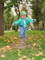 Осеннее равновесие