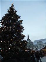 Таллин Зима
