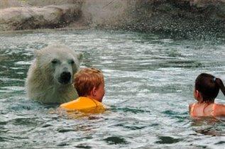 Конкурс С медвежонком веселей!