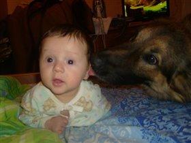 Собака друг человека!