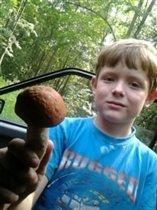 Смотрите,какой гриб я нашел!