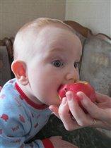 А я думал, яблоки в баночках растут!