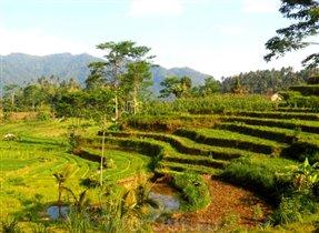 Индонезия: в погоне за новыми впечатлениями