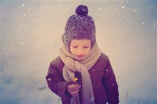 Цветок среди зимы