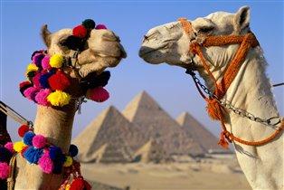 Дни Египта в Творческих мастерских 'Цыпленок и Огурец'