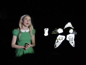 Детские спектакли 'Алиса, с Новым годом' в Зоологическом музее МГУ