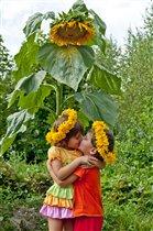 Дети- цветы жизни))