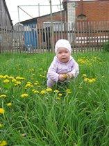 Первые весенние цветочки