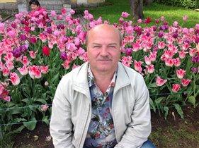 цветущая красота в Петергофе