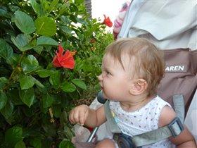 Как же пахнет этот заморский цветочек!