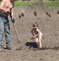 Дочь помагает отцу капать грядки на даче