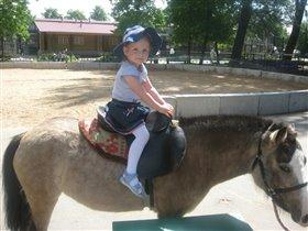 Очень любим мы пони!