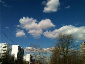 Небо любимого города