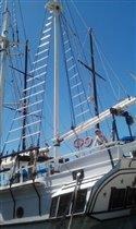 Начало пиратского путешествия в Котор