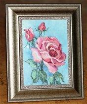 Pink Roses - Dimensions